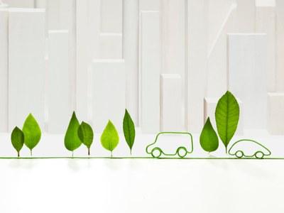 Ilustração que representa energia renovável. Algumas folhas verdes em pé, interligadas na base por um caule verde, que forma também o desenho do contorno de dois carros