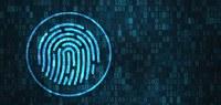 Assinatura digital reduz papelada sem trazer custos para os órgãos públicos