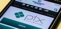 Guia do eSocial doméstico já pode ser paga com PIX