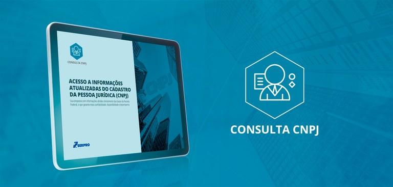 Baixe o e-book Consulta CNPJ